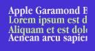 Apple Garamond Bold