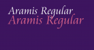 Aramis Regular