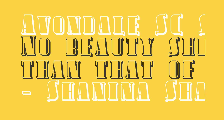 Avondale SC Shaded