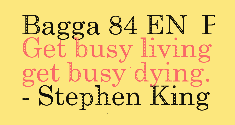 Bagga 84 EN  Pravin-Eco v1.00