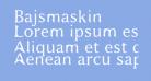 Bajsmaskin