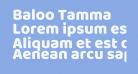 Baloo Tamma