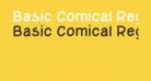 Basic Comical Regular NC