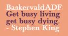 BaskervaldADFStd-Bold