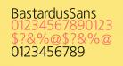 BastardusSans