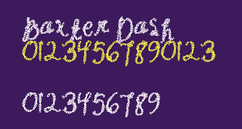 Baxter Dash