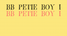 BB Petie Boy Heavy