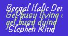 Beegal Italic Demo