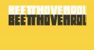 BeethovenRougher