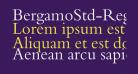 BergamoStd-Regular