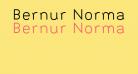 Bernur Normal