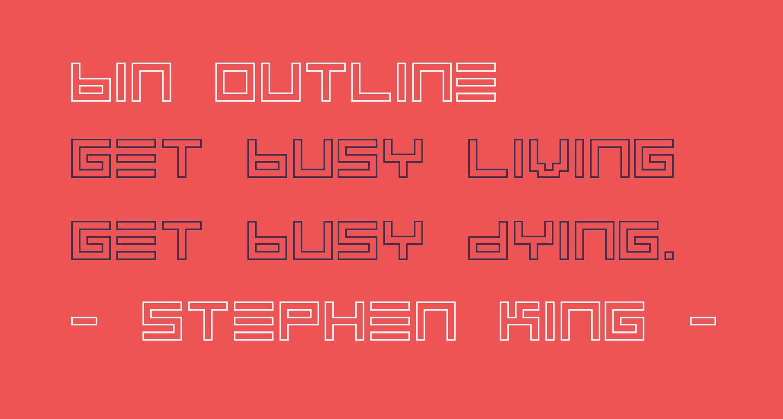 BIN Outline