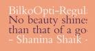 BilkoOpti-Regular