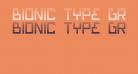 Bionic Type Gradient