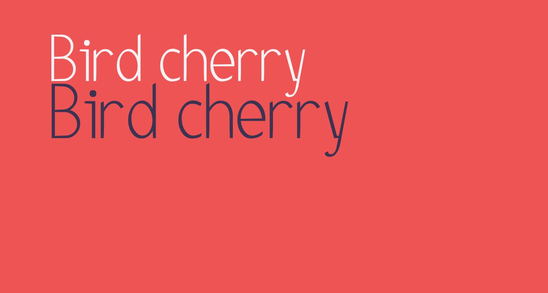 Bird cherry