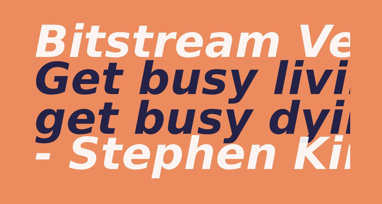 Bitstream Vera Sans Bold Oblique