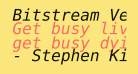Bitstream Vera Sans Mono Oblique