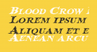 Blood Crow Expanded Italic