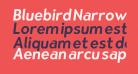 Bluebird Narrow Oblique