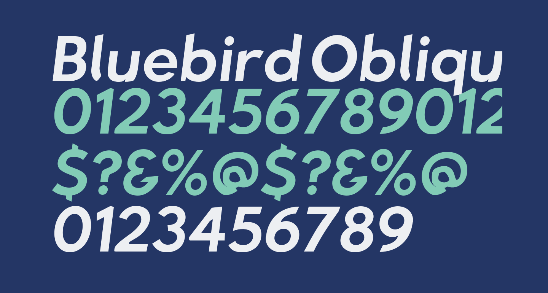 Bluebird Oblique
