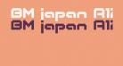 BM japan A12