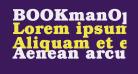 BOOKmanOpti-Bold