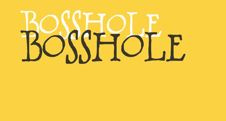BOSSHOLE
