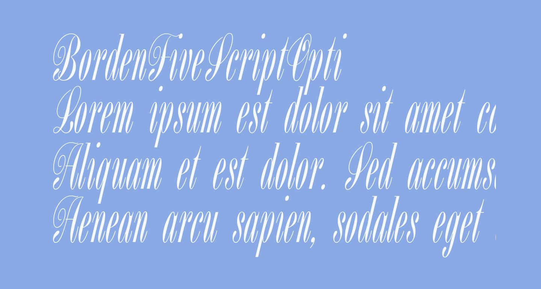 BordenFiveScriptOpti