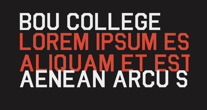Bou College