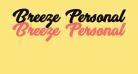 Breeze Personal Use Regular