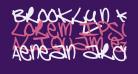 Brooklyn Kid