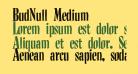 BudNull Medium