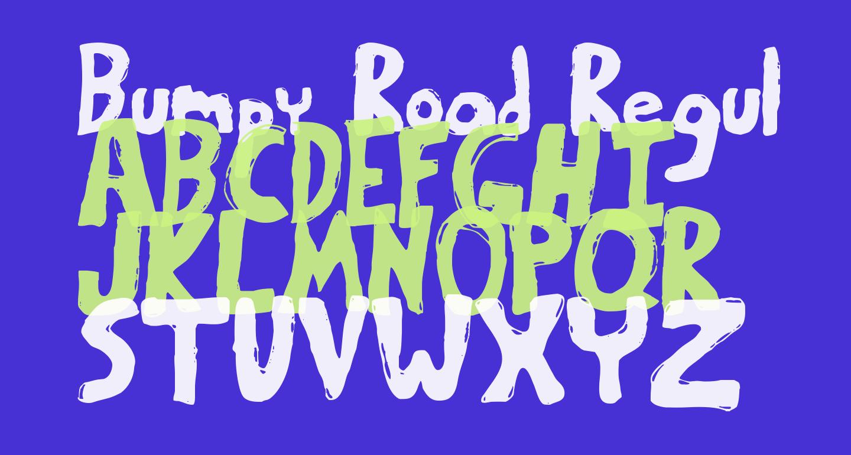 Bumpy Road Regular
