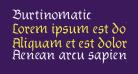 Burtinomatic
