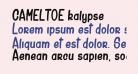 CAMELTOE kalypse