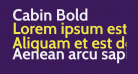 Cabin Bold