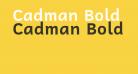 Cadman Bold