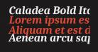 Caladea Bold Italic