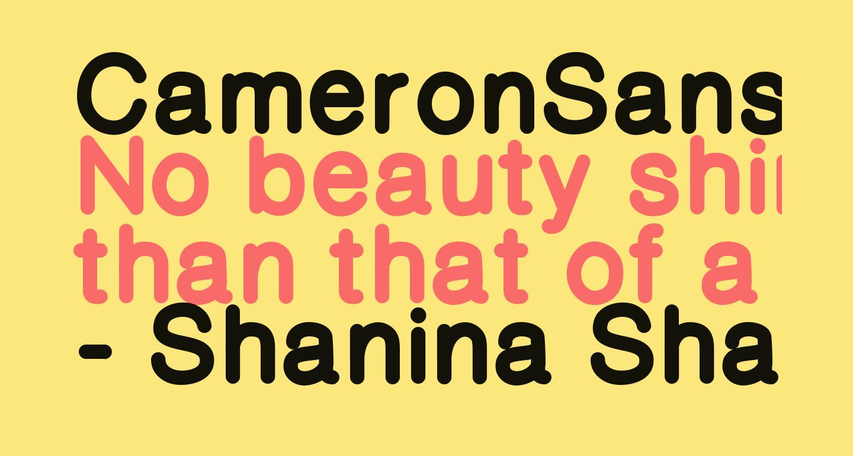 CameronSansExtraBold