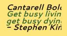 Cantarell Bold Oblique
