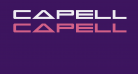 Capella Regular