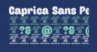 Caprica Sans Personal Use