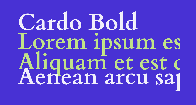 Cardo Bold