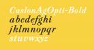 CaslonAgOpti-BoldItaSwash