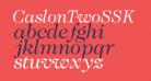 CaslonTwoSSK Italic