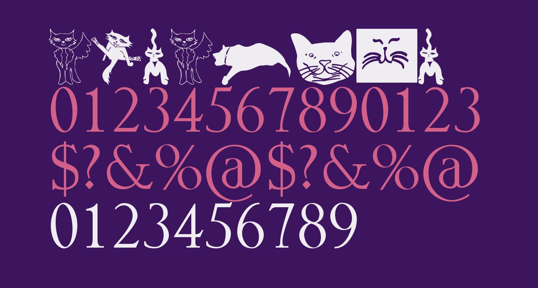 CatCrypt