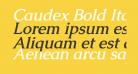 Caudex Bold Italic
