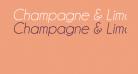 Champagne & Limousines Italic