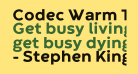 Codec Warm Trial ExtraBold