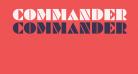 Commanders Regular